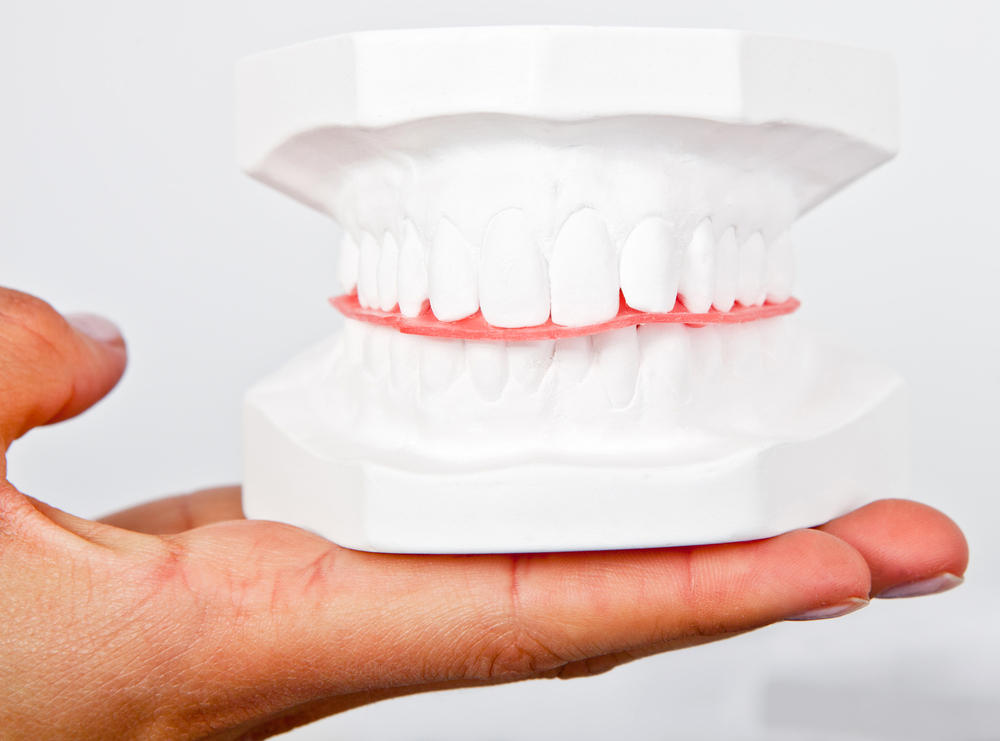 Man holding a teeth sample made out of plaster cast